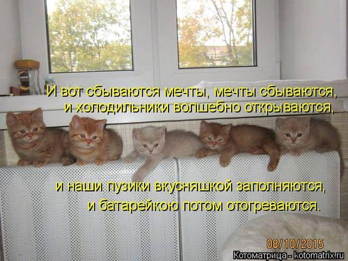 Белоруссия История Книги Скачать